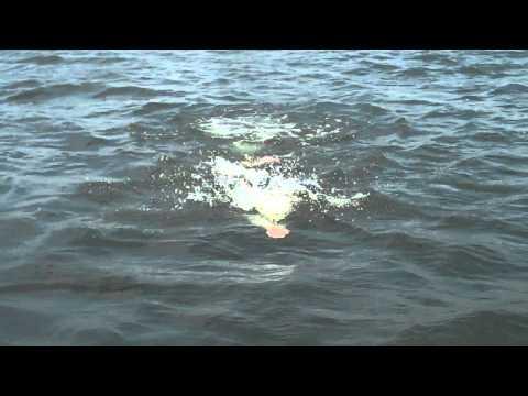 Manitou Triathlon In White Bear Lake
